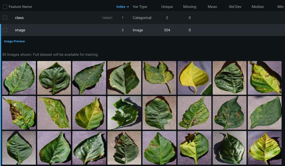 Figure 3. Sample images of bell pepper leaves