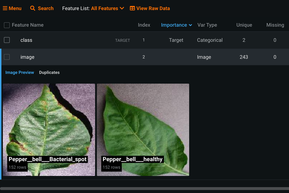 Figure 4. Sample images of diseased (left) and healthy (right) bell pepper leaves