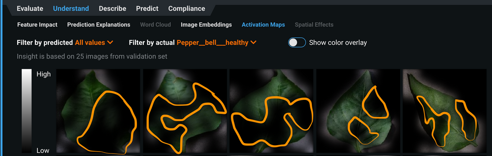 Figure 14. Activation maps of healthy bell pepper leaves showing the model ignoring considerable amount of areas along these leaves