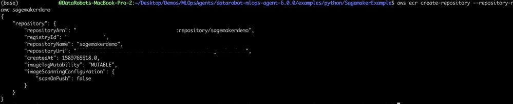 Figure 15. Amazon ECR registry output