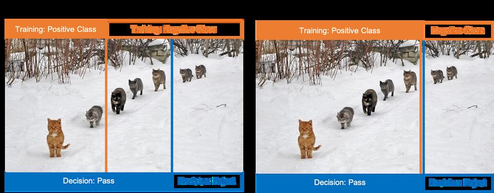 Photo credit: https://memegenerator.net/Cats-In-A-Line